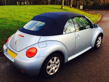 Picture of Beetle (Auto) H1106