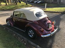 Picture of Beetle Model 1302 (H1100)